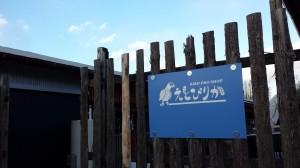 愛知県常滑市にあるインコとオウムとバードグッズのお店「えとぴりか」に行ってきた!